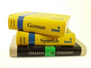 Globalisation of the english language - no dictionaries required